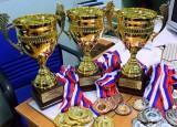 Награды за спортивные достижения