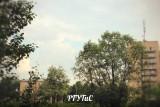 Кампус РГУТиС