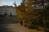 Главный корпус ВГУЭС - Владивостокский государственный университет экономики и сервиса