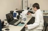 Научные исследования молодых ученых