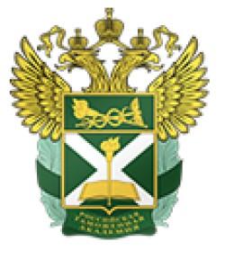 Санкт-Петербургский филиал